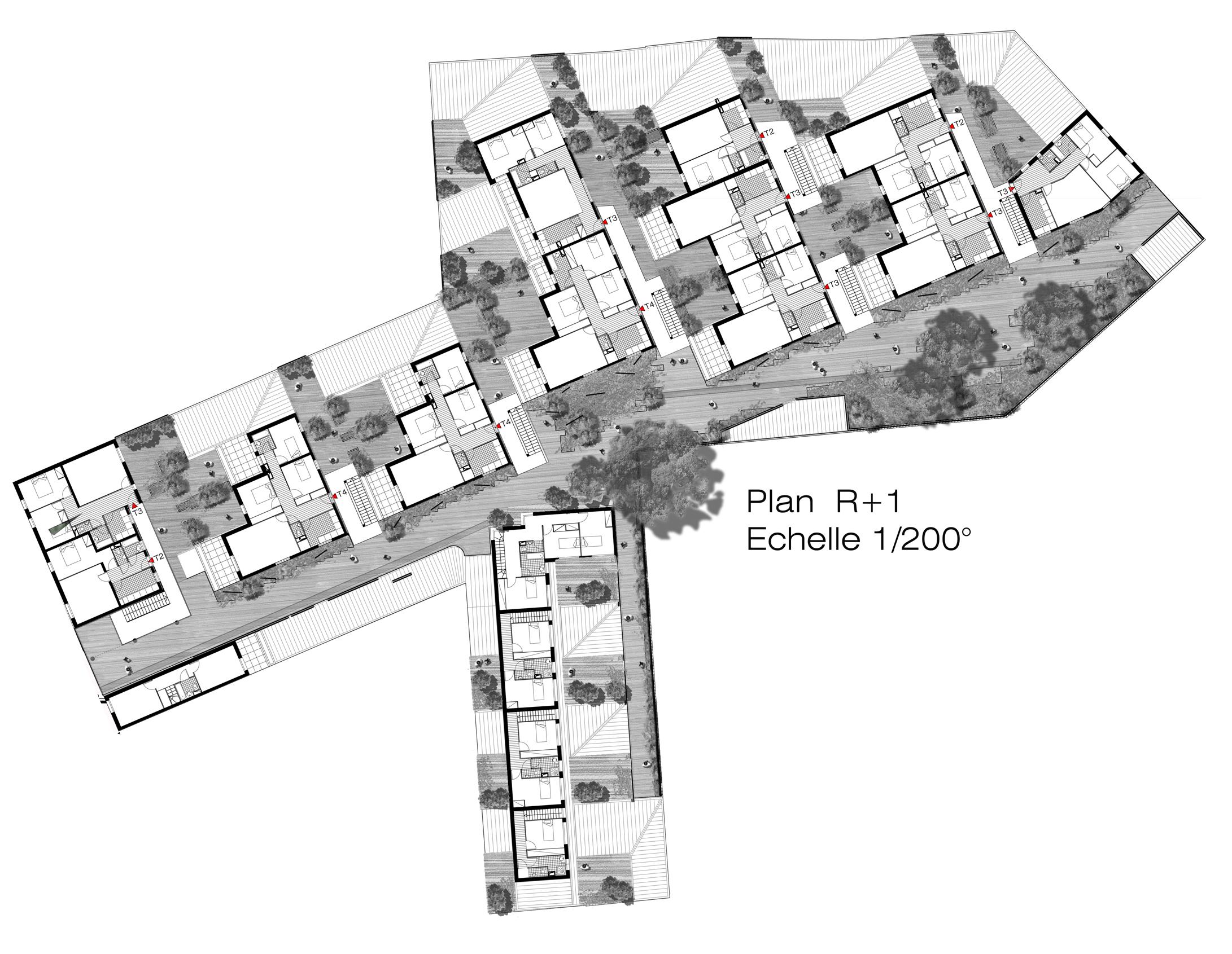 plan-r1